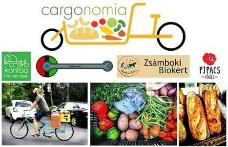 Cargonomia: l'alternative économique venue de Hongrie | Degrowth - Décroissance | Scoop.it