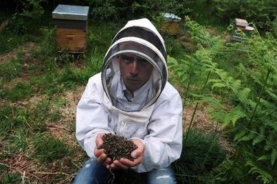 Pesticides systémiques, les apiculteurs européens veulent l ... - La Croix | pesticides : un vrai cancer social ? | Scoop.it
