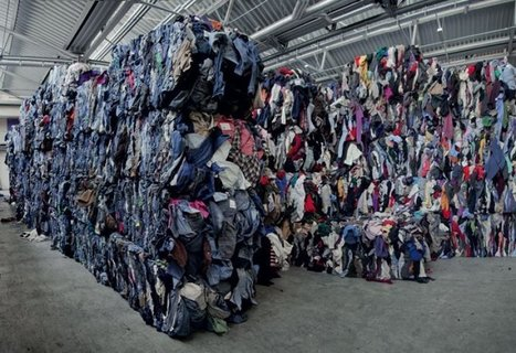Eco-system | Moda Sostenibile | Scoop.it