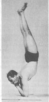 yoga   yoga iyengar   Scoop.it