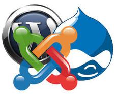 Advantages of Custom CMS Development -   TheTricksLab   Scoop.it