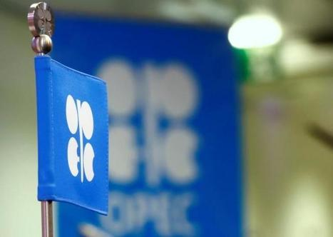 OPEC, U.S. begin 'cat and mouse' oil game as producers pounce on hedges@offshore stockbroker | Stockbroker | Scoop.it