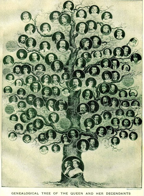 Introduction to Genealogy - Keith McCarty | The Best of Google Knol | Scoop.it