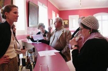 Printemps des châteaux : un week-end de dégustations   Le meilleur des blogs sur le vin - Un community manager visite le monde du vin. www.jacques-tang.fr   Scoop.it