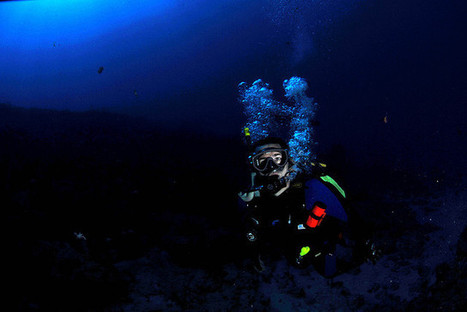 A Day in the Life of a Scuba Diver: Don't Get Lost Underwater | oktaviadivecenter.com | Scoop.it