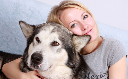 Dog Lover Dating Site   Meeting Someone From Online Dating   Scoop.it