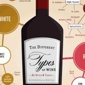 How to Choose Wine Infographic | Wine Folly | Autour du vin | Scoop.it