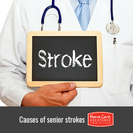 What Are the Most Common Causes of Strokes? | Senior Home Care in Phoenix | Scoop.it