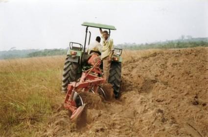 RD Congo : pour la Banque mondiale le salut viendra de l'agriculture | Questions de développement ... | Scoop.it