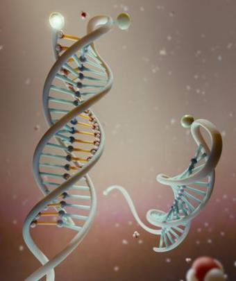 A DNA-based nanosensor that detects cancer by its pH | KurzweilAI | Longevity science | Scoop.it