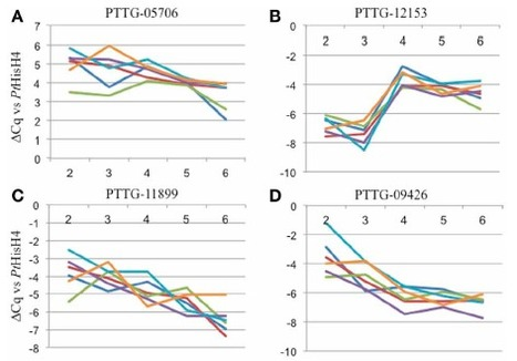 Frontiers | Using transcription of six Puccinia triticina races to identify the effective secretome during infection of wheat | Plant-Microbe Interaction | My papers | Scoop.it