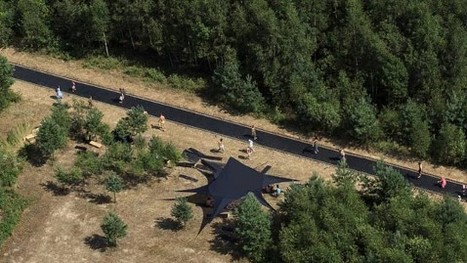 170-Foot-Long Trampoline Installed in Russian Forest | No Such Thing As The News | Scoop.it