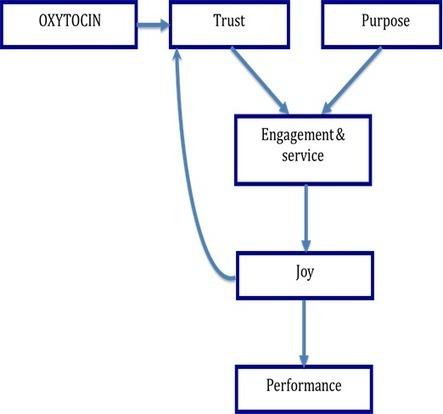 Building Trust Is a Blood Sport | Ivey Business Journal | Organisation Development | Scoop.it