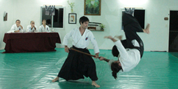 Aikido: arte marcial que crece en Formosa - Diario El Comercial, Formosa - El Comercial.com.ar   artes marciales   Scoop.it