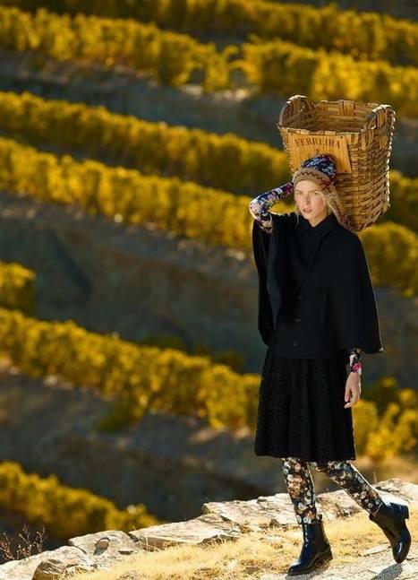 Portugal Wine Harvest Fashion | Wine Liquid Lisbon | Scoop.it