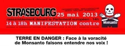 Manifestation contre Monsanto, 25 mai au Parlement Européen - Rue89 Strasbourg | Abeilles, intoxications et informations | Scoop.it