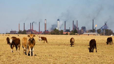 Vers la tarification du carbone | Economie publique | Scoop.it