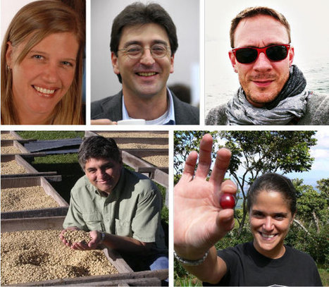 SCAA Announces 2014-15 Board of Directors | Coffee News | Scoop.it