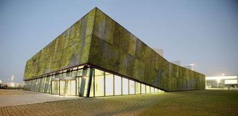 Hormigón verde- El País.com (España) | Jardines Verticales y azoteas verdes. | Scoop.it