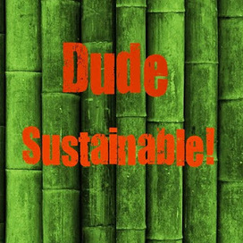 Dude, Sustainable! | Environment | Scoop.it