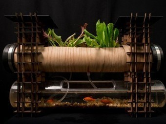 Solar powered aquaponics for your apartments - Treehugger (blog) | Aquaponics in Action | Scoop.it