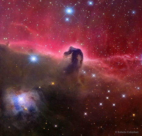 APOD: 2015 May 13 - The Magnificent Horsehead Nebula | tecnologia s sustentabilidade | Scoop.it