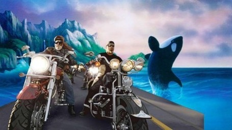 Bikers Want Freedom 4 Orcas - Ecorazzi | #Orca #Avenger Loki Mars | Scoop.it