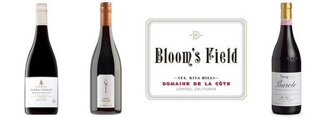 What's the Big Deal About Stems?   Wine News & Features   Grande Passione   Scoop.it