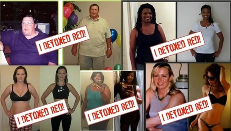 Red Smoothie Detox Factor Reviews Is A Scam Or Works?   Red Smoothie Detox Factor Review - Does It Really Work?   Scoop.it