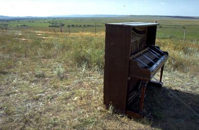 Music for Grasslands   DESARTSONNANTS - CRÉATION SONORE ET ENVIRONNEMENT - ENVIRONMENTAL SOUND ART - PAYSAGES ET ECOLOGIE SONORE   Scoop.it