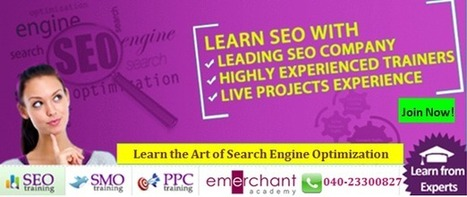 e-Merchant Academy: Lean SEO With Industry Experts | Search Engine Optimization | Scoop.it