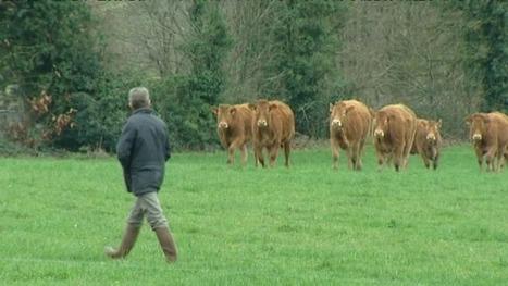 Morbihan : des médiateurs agricoles dénouent les conflits - Francetv info   osez la médiation   Scoop.it