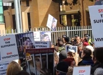 Animal rights protesters out in force - Cherwell Online | Animals R Us | Scoop.it