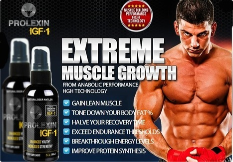 Prolexin Review - Is Prolexin igf-1 an Effective Muscle Building Supplement? | | Best Muscle Building Solution! | Scoop.it