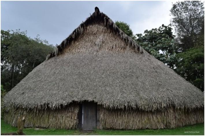 Interpretaciones místicas del Amazonas: sinergia entre razón y sentidos | Red Historia | Kiosque du monde : Amériques | Scoop.it