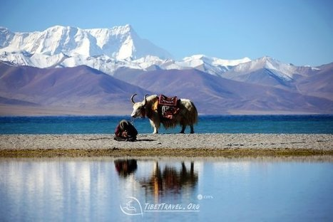 Make a responsible Tibet tour | Best Travel Time to Tibet | Scoop.it
