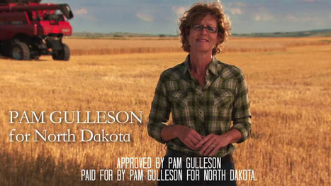 Pam Gulleson for Congress Political - 800 Kamerman HD   Reality show production company   Scoop.it
