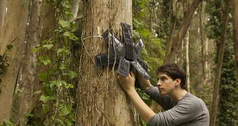 Le recyclage de smartphones : plus loin dans l'écologie en luttant contre la déforestation | L'Atelier: Disruptive innovation | DESARTSONNANTS - CRÉATION SONORE ET ENVIRONNEMENT - ENVIRONMENTAL SOUND ART - PAYSAGES ET ECOLOGIE SONORE | Scoop.it