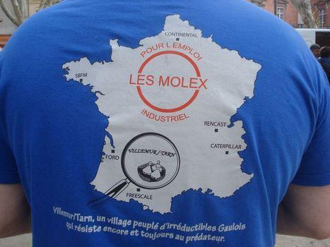 Les «Molex», bien licenciés par la maison-mère américaine ? | Toulouse La Ville Rose | Scoop.it