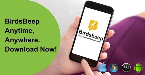 Features to look into when searching for an Android mobile messaging app | Birds Beep | Scoop.it