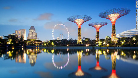 Solar-powered 'supertrees' breathe life into Singapore's urban oasis | education4all | Scoop.it