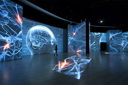 Grande Exhibitions | Cabinet de curiosités numériques | Scoop.it