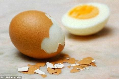 Could eggs make you more generous? | Kickin' Kickers | Scoop.it