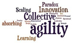 Building Collective Agility for Innovation | Knowledge Management | Scoop.it