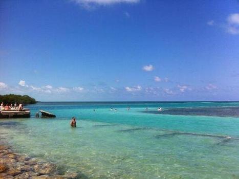 Tweet from @SanPedroScoop   Belize   Scoop.it