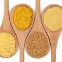 Natural relief from allergies | Longevity science | Scoop.it