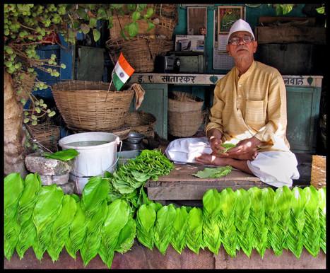 The Brighter Side of Paan : Medical Benefits of Ingredients of Paan ... | The Paanwala | Scoop.it
