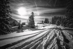 Balades en noir et blanc | Photo my design | Scoop.it
