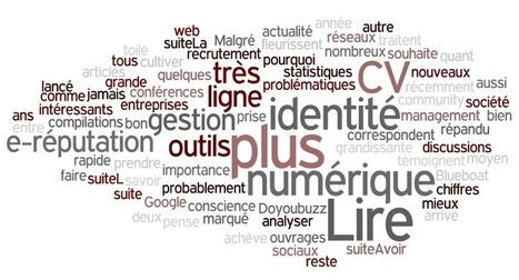 Utiliser Pearltrees pour présenter son identité numérique | Identité numérique | Trucs&Astuces : veille2.0 | Scoop.it