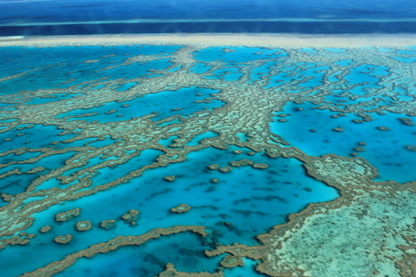 Great Barrier Reef report in: time to make polluters pay | Geographical Issues | Scoop.it